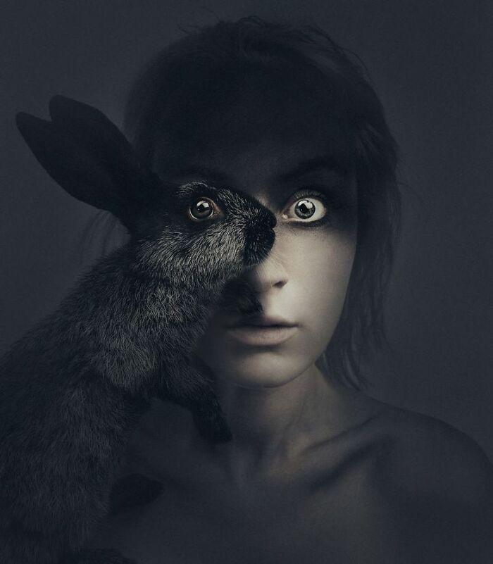 Le photographe partage un œil avec divers animaux pour des portraits surréalistes