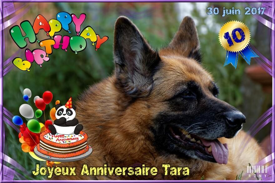 Joyeux Anniversaire Tara (10 ans aujourd'hui)