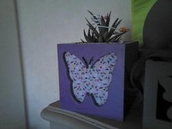 CACHE POT papillon