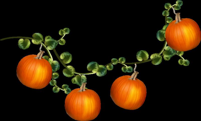 MRD_HSpell-pumpkin-vine.png