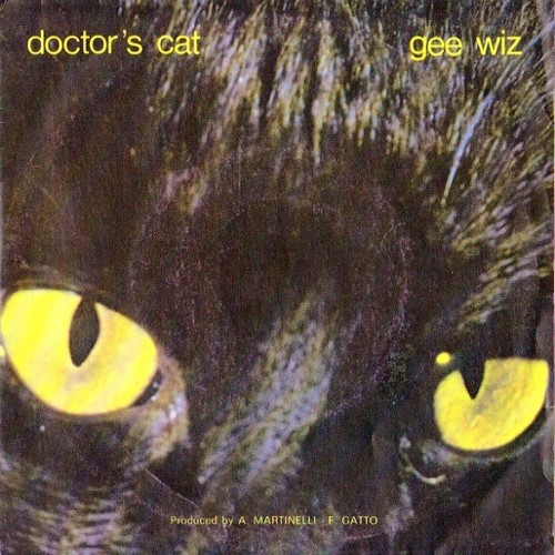 Doctor's Cat - Gee Wiz (1985)