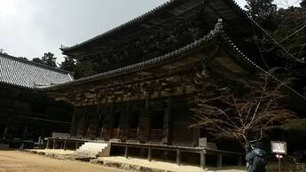 Japon, 21.03.17 - Le château du héron blanc sous la pluie