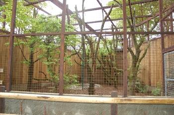 Parc animalier Bouillon 2013 enclos 078