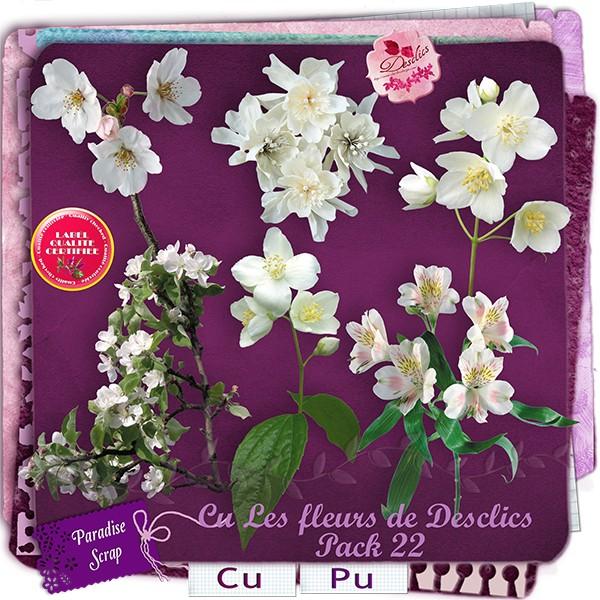 Cu les fleurs de Desclics