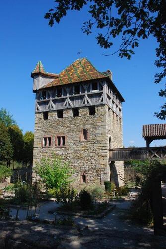 La maison forte de Mulhouse XII et XIII