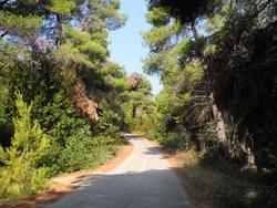 Skiathos, Skopelos, Alonnisos, Kira Panayia