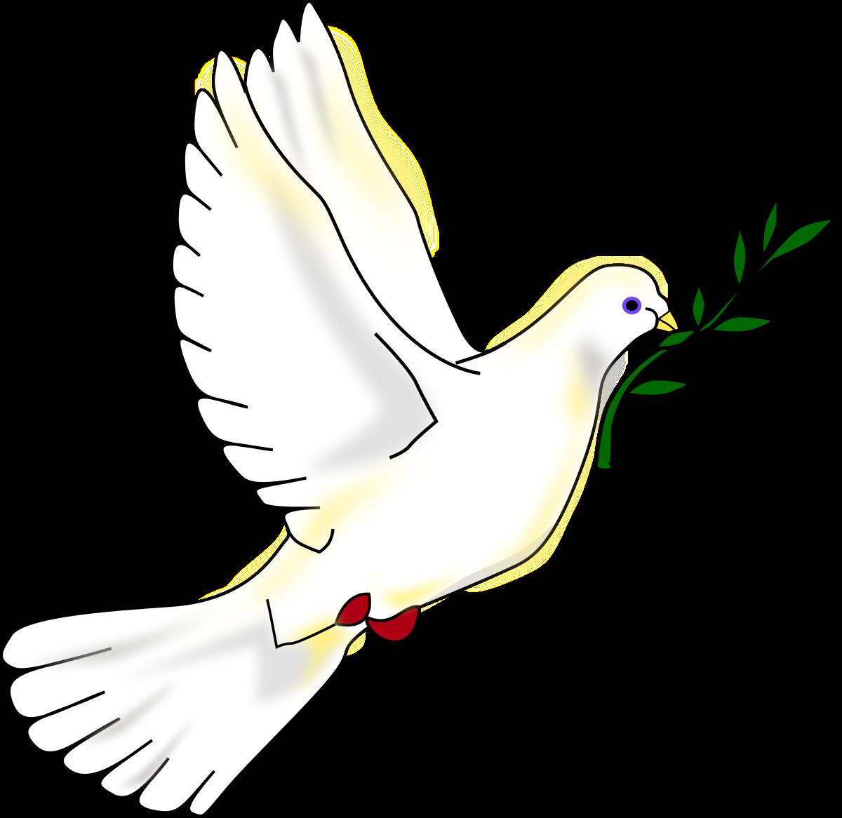 Colombe de la paix — Wikipédia