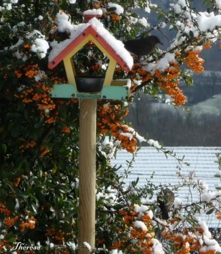 Premiere-neige-26-27-novembre-2011--10-.JPG