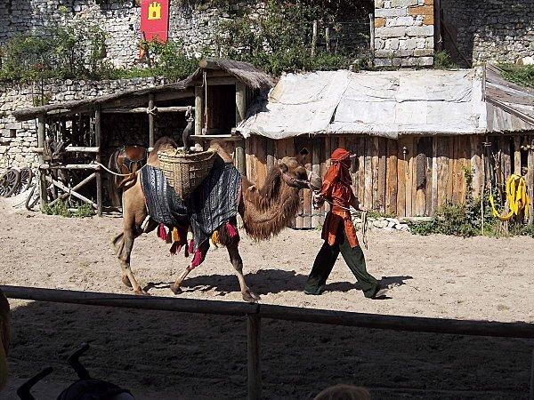 cité médiévale de Provins (33)