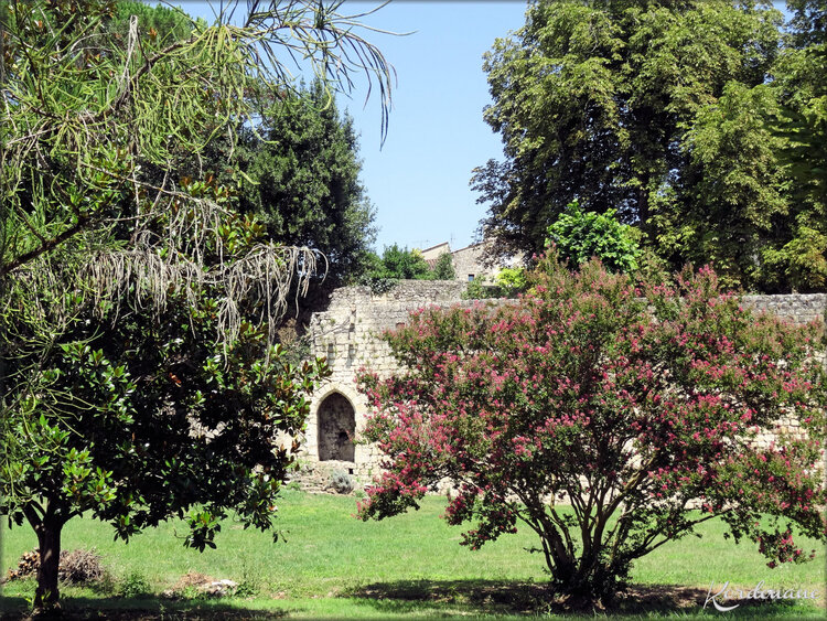 Photos de la porte des escaliers - Rions - Gironde