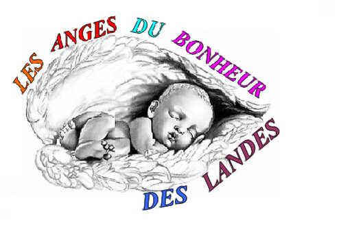 bienvenue sur les anges du bonheur des landes