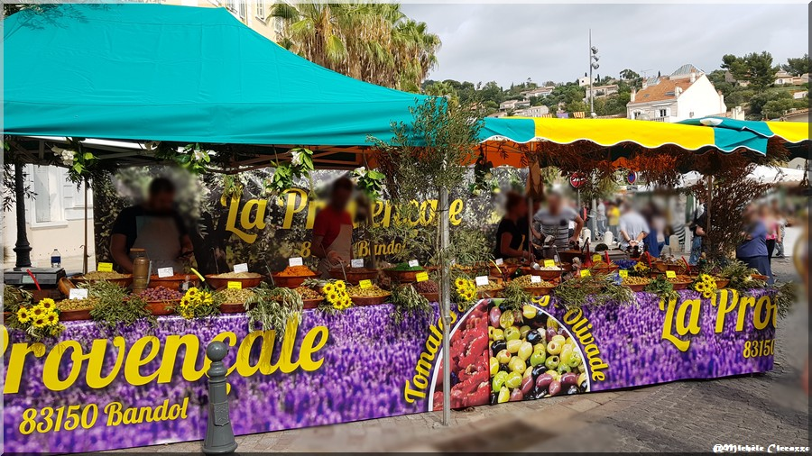 Ollioules - Fête de l'Olivier - l'olive (1)