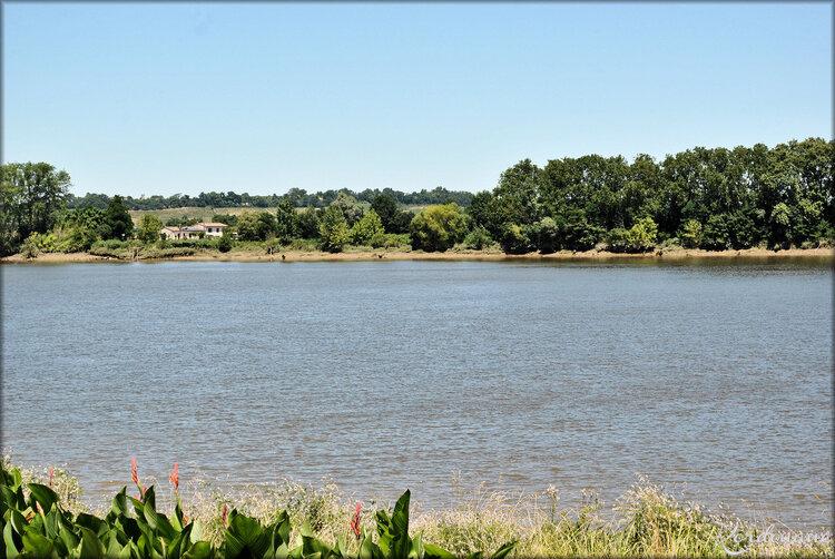 Les rives de la Dordogne (Château de Vayres)