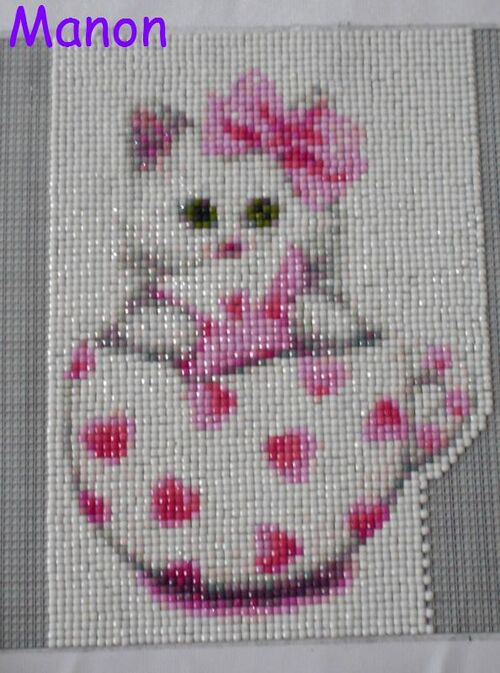 Broderie Chat (3)