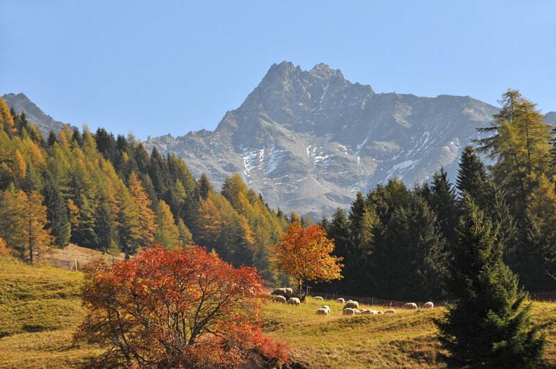 Balade automnale : Suisse et Italie (#2)