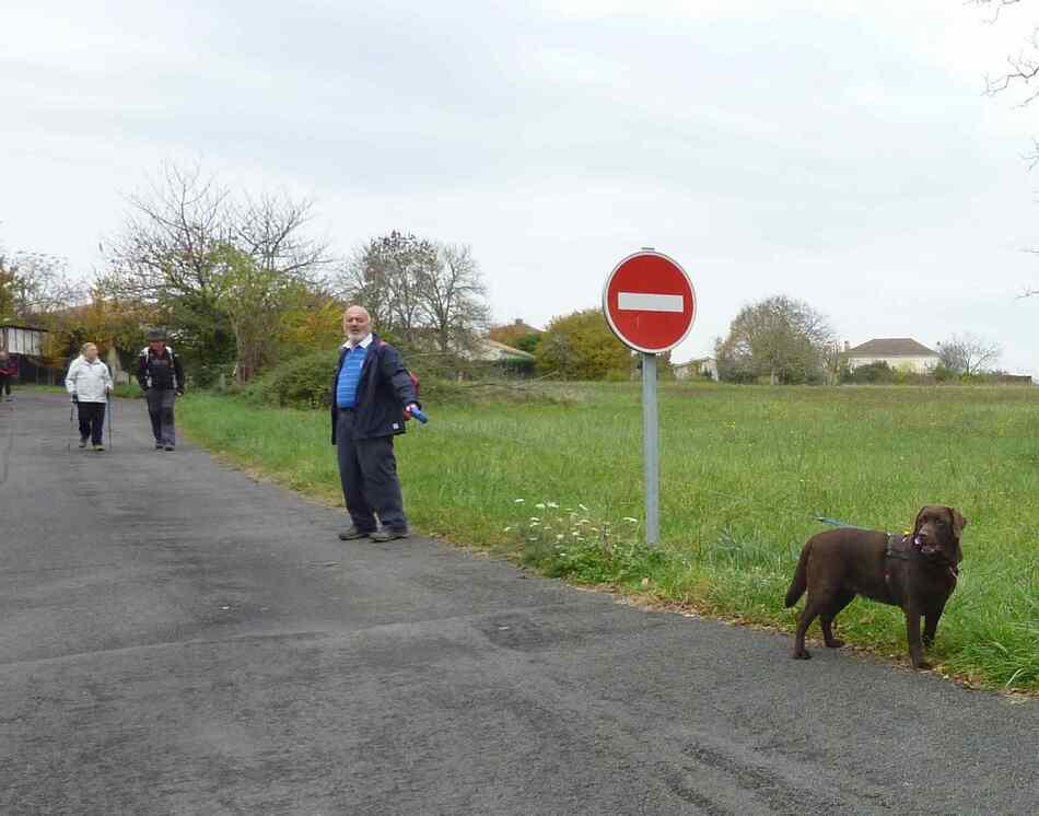 Randonnée au bord de la Charente.