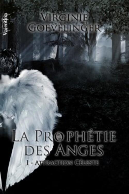 """""""La prophétie des anges"""" T1 J'ai énormément aimé. Une histoire d'ange bien aboutie et très bien écrite."""