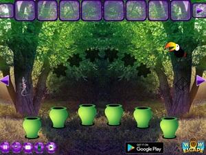 Jouer à Bio forest escape