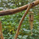 Mon carillon de bambou sur la pergola terminée