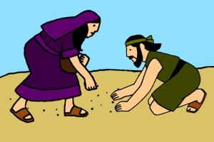 6_Dieu fournit la manne et la caille