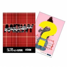 Goodies pour le concert des Berryz au Budokan !
