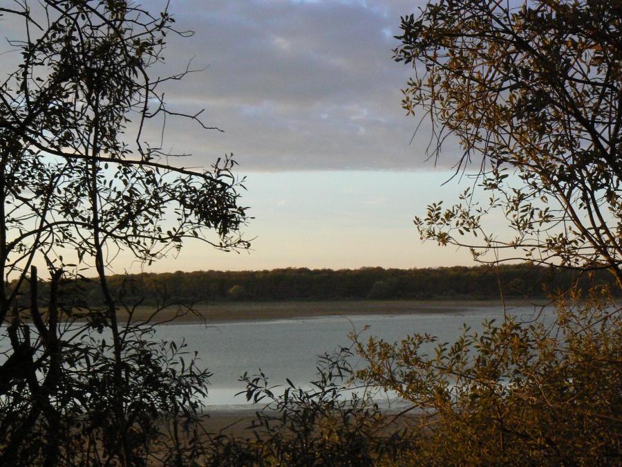 Coucher de soleil sur le lac du Der (2)