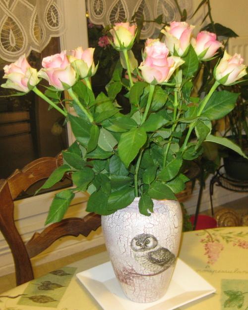 La rose n°43 demandée par Jean Pierre