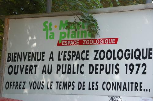 Sortie scolaire au Zoo de St Martin La Plaine