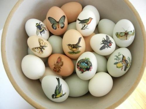 Les oeufs de Pâques - Thème 4