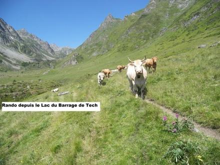 Balades & Randos dans les Hautes Pyrénées