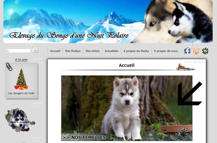 Changement du design du site Internet