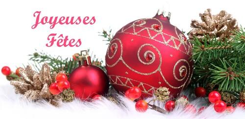 Marché de Noel de l' AAPIQ à Rochefort sur mer
