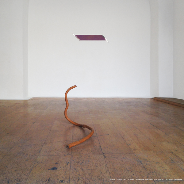 Toni Grand,Daniel Dezeuze pendant exposition Supports surfaces Nimes