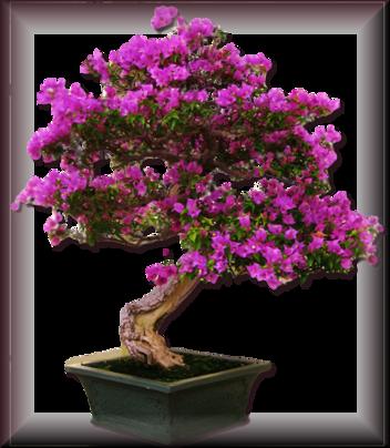 Tubes d'arbre 2959