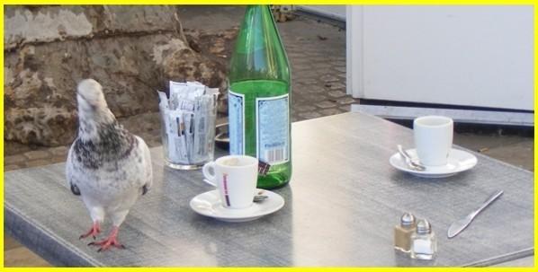 Martigues-blog.jpg