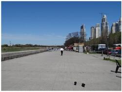 Reflets de Buenos Aires et des Portenos