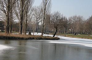 lac gelé -6-