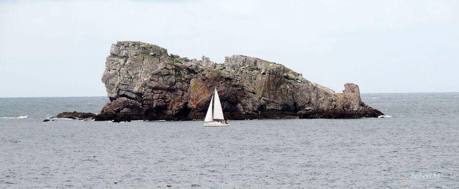 Camaret - Finistère (29)