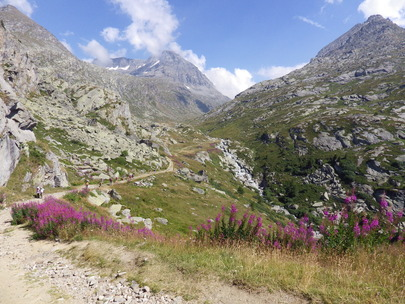 Topo Lac de Savine - Col Clapier