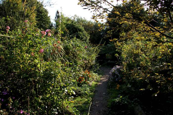 L'automne aux Pépinières Foucart