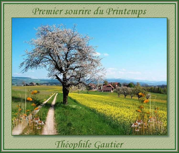 """"""" Premier sourire du Printemps """" poème de Théophile Gautier"""