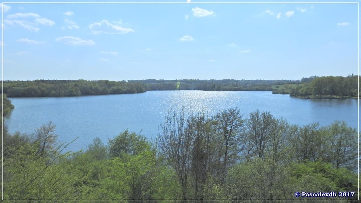 Le lac de La Prade - Avril 2017 - 11/12