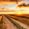 country road - copie