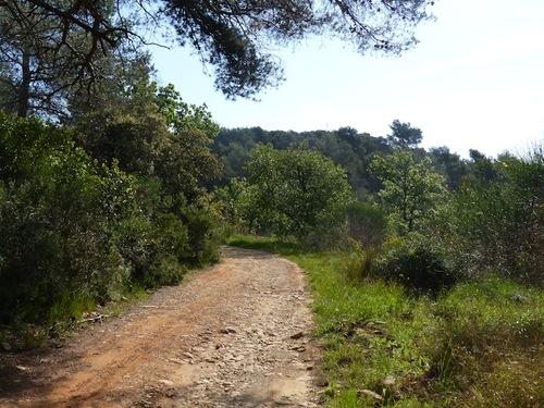 Sentier des 4 frères (Le Beausset - 83)