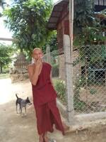 Birmanie 2015, jour 8 Mingun (3)