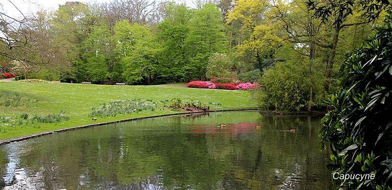 Parc de la gaudinière, 27 avril 2012 (8)