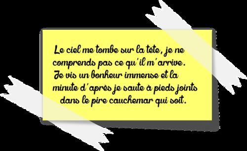 L'Illusion - Martine Colas