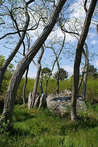 J-dolmen Varennes de Cumeray01