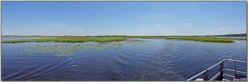 La fin du safari approche, nous quittons la zone humide où nous avons fait de superbes observations de la faune - Safari nautique - Parc National de Chobe - Botswana