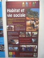 """Exposition à la médiathèque """"A la rencontre des Adivasi"""" (3)"""